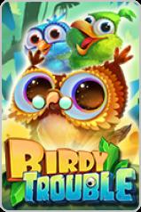 birdy-trouble